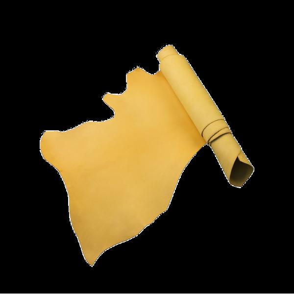 義大利布諾邊皮 山吹黃色 BELLY 1.6/2.0+mm